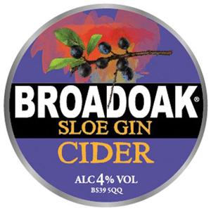 Broadoak Sloe Gin 20Ltr Bag in Box 4.0%